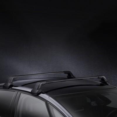 Serie di 2 barre del tetto trasversali Citroën DS 4