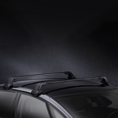 Set of 2 transverse roof bars Citroën DS 5