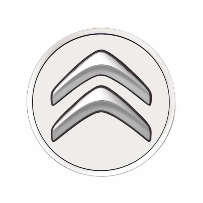 Juego de 4 embellecedores centrales de rueda Citroën - blanco BANQUISE