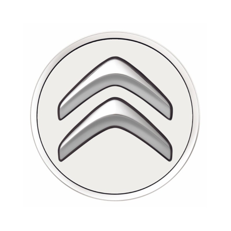 Set of 4 Center caps Citroën - white BANQUISE